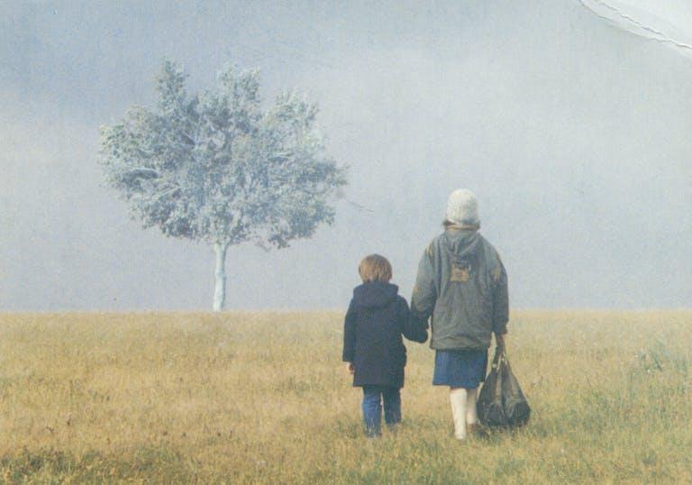 Still Landscape in the Mist